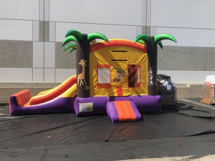 Tropical Bouncer/W Slide  (22x13x15)